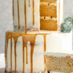 Vegan cake vs. normal cake